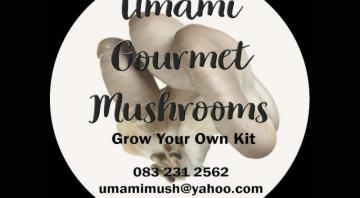 Umami Gourmet Mushrooms