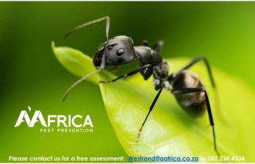 AAfrica Pest Prevention and Weed Control